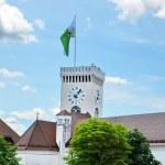 Magic Ljubljana with flag on a Castle — Stock Photo #29714679