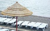 沙滩伞 — 图库照片