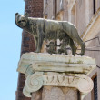 Romul and Remus statue in Rome — Stock Photo