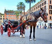 Horse pulling carriage for tourists — Stock Photo