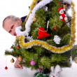 Happy man and christmas tree — Stock Photo