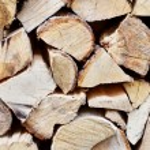 Timber background — Stock Photo