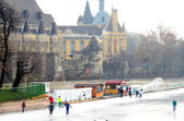 Budapest  iceskating — Stock Photo
