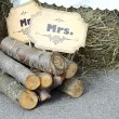 Mister and misses signs on wooden logs, country style wedding — Stock Photo