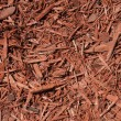 Red Cedar Mulch Background — Stock Photo