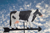 Cow Weather Vane — Stock Photo