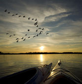 Kayaks on Lake Ontario Sunset — Stock Photo