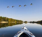 Rano spokojnym jeziorze — Zdjęcie stockowe