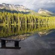 Honeymoon Lake Reflection - Stock Photo