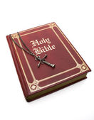 Red Bible on White — Stock Photo