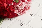 Carnations on Valentine's Day — Foto Stock