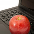 Stock Photo: Apple on a Laptop