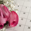 Roses on Valentine's Day - Stockfoto