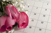 Roses on Valentine's Day — Stock Photo