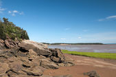 Bay of Fundy Red Soil — Stock Photo