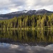 Lake Reflection — Stock Photo