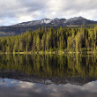 Lake Reflection — Stock Photo #34028925