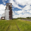 Old Grain Elevator — Stock Photo #45120283