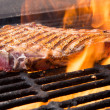 Steak on a Grill — Stock Photo #19394209