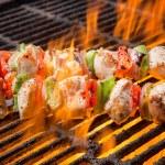 Chicken Shisk kebab — Stock Photo