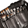 Set of brushes for makeup — Stock Photo #20423103