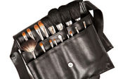 Set of brushes for makeup — Stock Photo