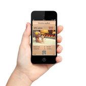Isolé main de femme tenant le téléphone avec un portefeuille mobile et un — Photo