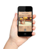 孤立的女人手拿着电话与手机钱包和 — 图库照片