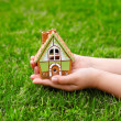 Children hands hold a house on a background of green grass — Stock Photo