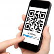 Woman hand holding a phone with qr code on the screen — Stock fotografie