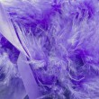 Stock Photo: Violet feathers