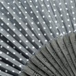 Stock Photo: Black fan