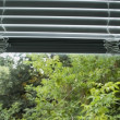 Half opened blinds — Stock Photo