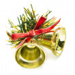 Christmas bells — Stock Photo #31473639
