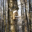 Stock Photo: Birdhouse