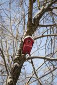 Red birdhouse — Stock Photo