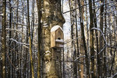 Birdhouse — Stock Photo