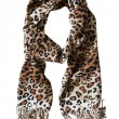 Leopard scarf — Stock Photo #42965755