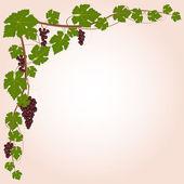 Red grape branch frame — Stock Vector