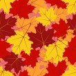 Royalty-Free Stock Vector Image: Maple leaf pattern