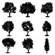 Set of trees silhouettes — Stock Vector #36675853