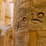 Columns' detail in the Karnak temple in Luxor, Egypt — Stock Photo #20802827