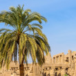 Karnak temple in Luxor, Egypt. — Stock Photo