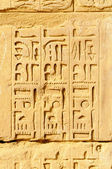 Hieroglyphs in Karnak, Egypt — Stock Photo