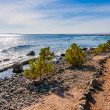 The Egyptian Red Sea in Hurgada - Stock Photo