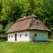 A typical ukrainian antique house - Stok fotoğraf