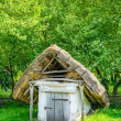 Royalty-Free Stock Photo: A typical ukrainian antique hut