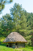 A typical ukrainian antique hut — Stockfoto