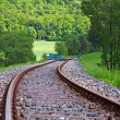 Royalty-Free Stock Photo: train tracks