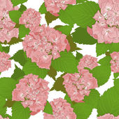 Seamless background with pink hydrangea — Stock Vector